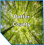 Potter County Mental Health Service Potter County CenClear Coudersport Mental Health Counseling